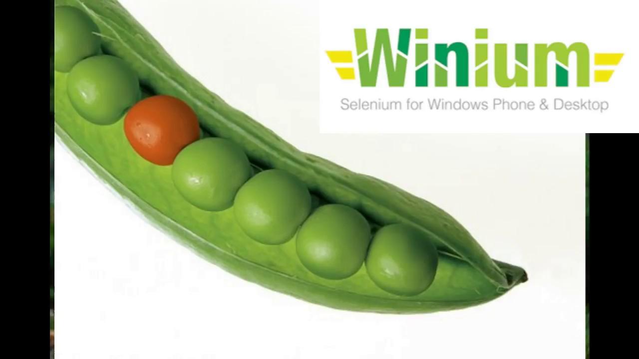Winium Desktop Tutorial
