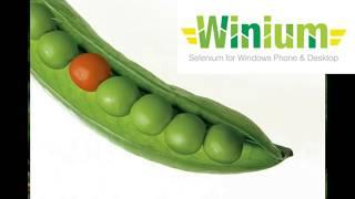 Winium Python Install