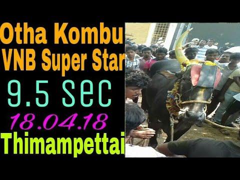 Otha Kombu Vaniyambadi Super Star (9.5 point)  in Thimampettai (Vnb Tk)   in 18.04.18