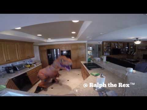 TREX DOING HOUSEWORK LIKE NO ONE IS WATCHING!