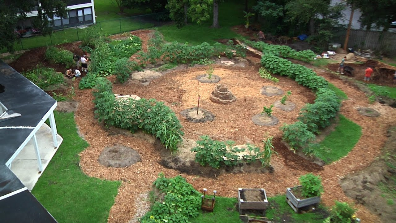 Permaculture Paradise: Edgewood Gardens August Update ... on Backyard Permaculture Design id=92339