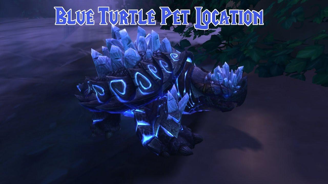 Blue Turtle Pet Manashell Hunter Pet Location Youtube