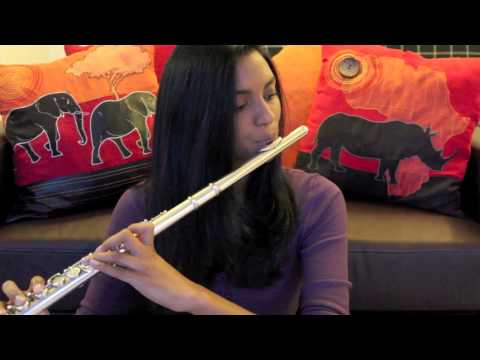 Elements - Lindsey Stirling Flute Cover