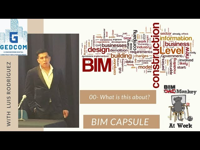 BIM Capsule -00- What is this about?