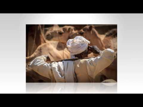 Keren Camel Market, Eritrea