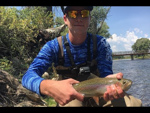 Fly Fishing the Colorado River!