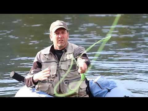 Fly Fishing in Yellowstone National Park with Flying Pig!