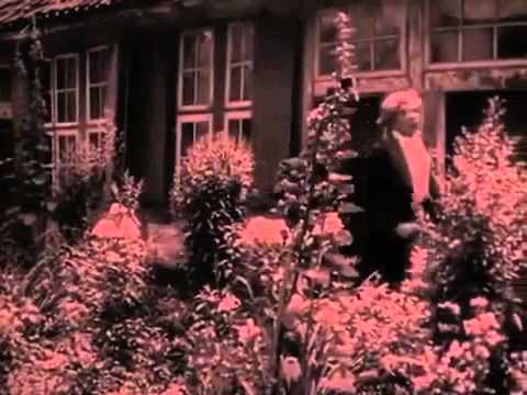 Symphony of Horrors (Noferatu) finale
