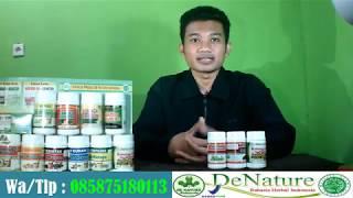Cara Mengobati Penyakit Kencing Keluar Nanah Dari De Nature Indonesia