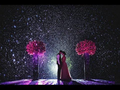 топ 17 молодоженов в день своей свадьбы не испугались даже дождя