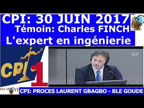 PART 1 - 30 JUIN 2017 - Procès Laurent GBAGBO et Blé GOUDE - Témoin Expert Charles FINCH