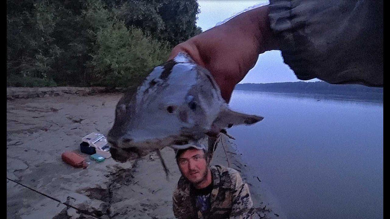 ОДИН ЗАБРОС 160 Т. Р , КАСТРЮК НА ЗАКИДУШКУ!!Рыбалка с ночевкой! Крокодил на джиг! Рыбалка на Алтае.