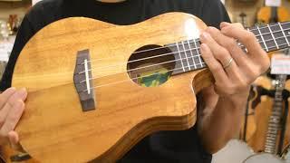 NEW/Big Island KT-TRC@guitarshoptantan thumbnail