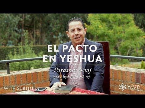 Noaj - El Pacto en Yeshua / The Covenant in Yeshua