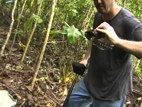 Metal Detecting on a Tropical Island in the Pacific - (Guava Island) Pirate Gold