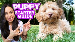 FIRST DAYS WITH NEW PUPPY! 🐶 Everything you need to know and do