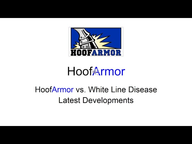 HoofArmor vs White Line Disease