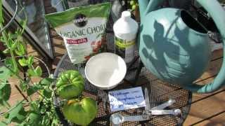 Using Organic Fish Emulsion or Fertilizer on Garden Vegetables: The Basics - The Rusted Garden 2013 thumbnail