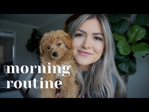 MORNING ROUTINE | CAVAPOO PUPPY | CAVOODLE | Alina Vitorsky