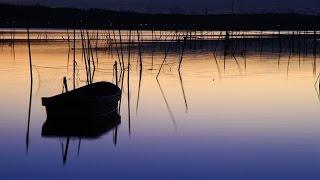 妖艶で情感たっぷりで素敵な坂本冬美さんの「百夜行」を歌ってみました...
