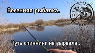 На Рыбалку в Межсезонье.Весенние поклевки.Рыбалка на Спиннинг.