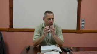 Мышление демона (Враджендра Кумар пр.) (ШБ 10.1.69) - 11.06.2014
