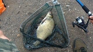 Рыбалка летом на хорошего леща. Ловля на кормушки и поплавок с берега на озере.