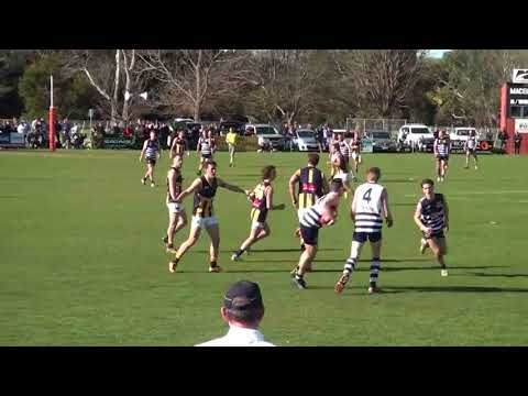2017 RDFL Grand Final Highlights