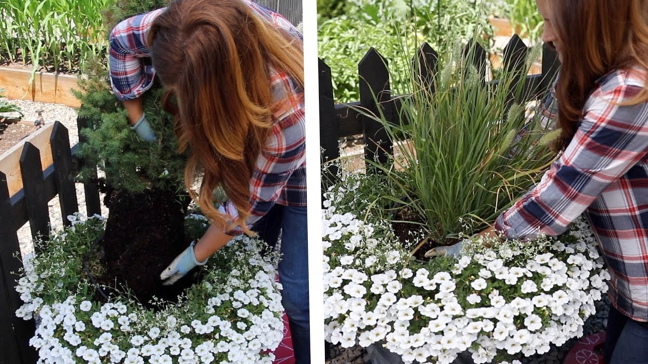 how-to-replace-a-dying-centerpiece-in-a-container-garden-answer