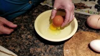 Курица снесла слишком большое яйцо и хозяйка решила проверить, что там внутри