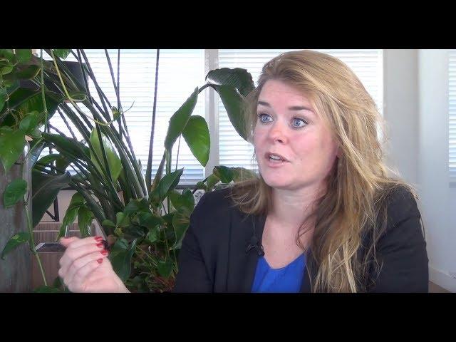 Marieke de Hoon: Mogelijke steun Nederland aan Syrische rebellen kan pijnlijk uitpakken.