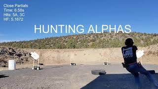 Anderson Shooting Group Aiming Test - Center of Available Target Area vs Hunting for Alphas