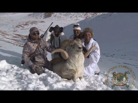 Marco Polo Sheep Hunt Hunting Consortium