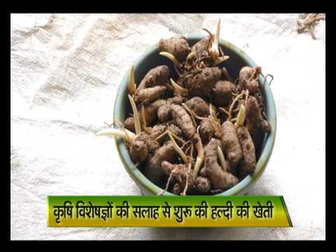 2 साल एक पड़ताल - वाह किसान | Wah Kisan - Success Story - 20 (Spot)