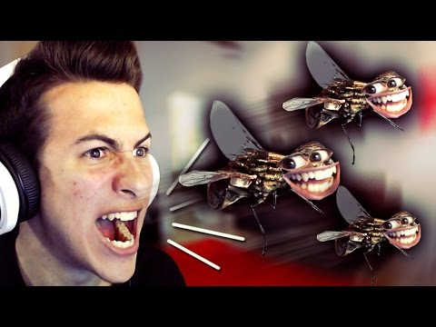 JE HAIS LES MOUCHES !! - Fly In the House...