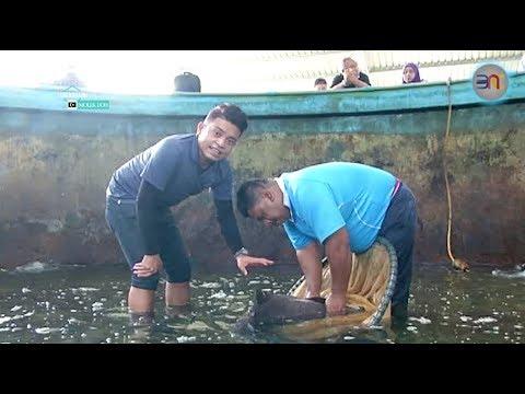 HD [DOKUMENTARI] Terengganu Molek Doh