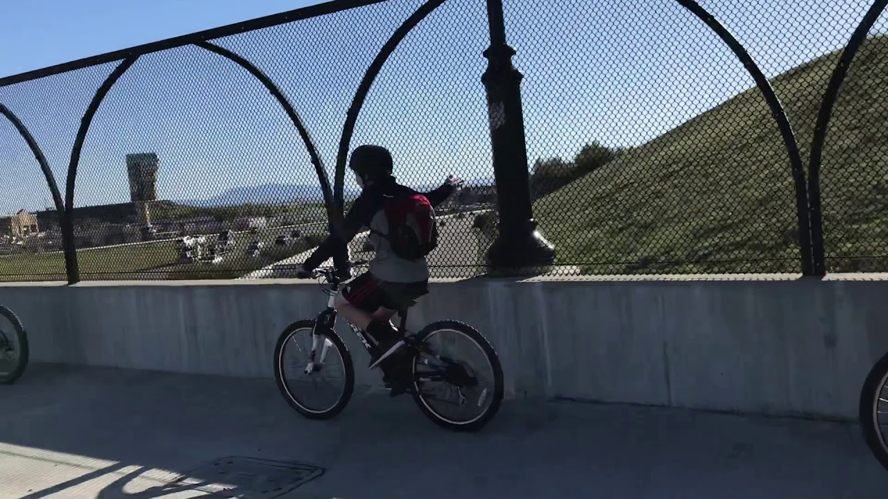 Biker Gangs Beware - YouTube