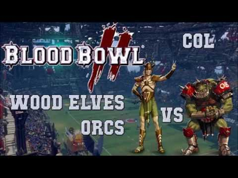 Blood Bowl 2 - Wood Elves (the Sage) vs Orcs (SquirrelDude) - COL G15
