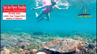 Gili Gede Island   Snorkeling With Tropical Fish, Island Hopping In The Southern Gili Islands