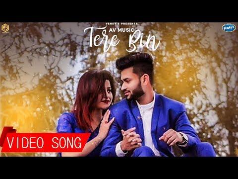 tere-bin-|-full-song-|-av-music-|-tarik-khan-|-new-hindi-song-|-music-&-sound