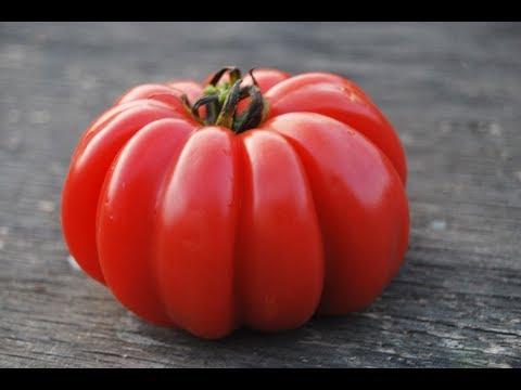 Обзор томата ГРИБНОЕ ЛУКОШКО | лукошко | грибное | лета_2018 | томата | лучший | томат | супер | обзор