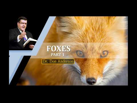 Foxes (part 1) - Dr. Don Anderson Ministries