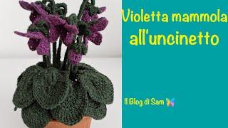 Spiegazione della Violetta mammola all'uncinetto