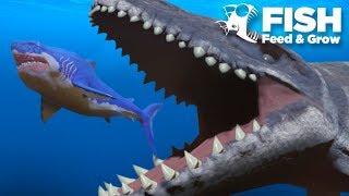 MOSASAUR vs MEGALODON!!! - Fish Feed Grow