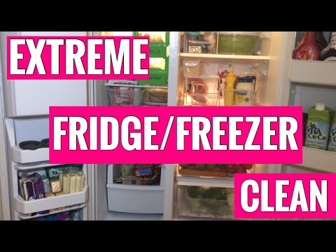 Extreme Fridge & Freezer Clean
