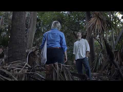 Littoral rainforest in Port Stephens
