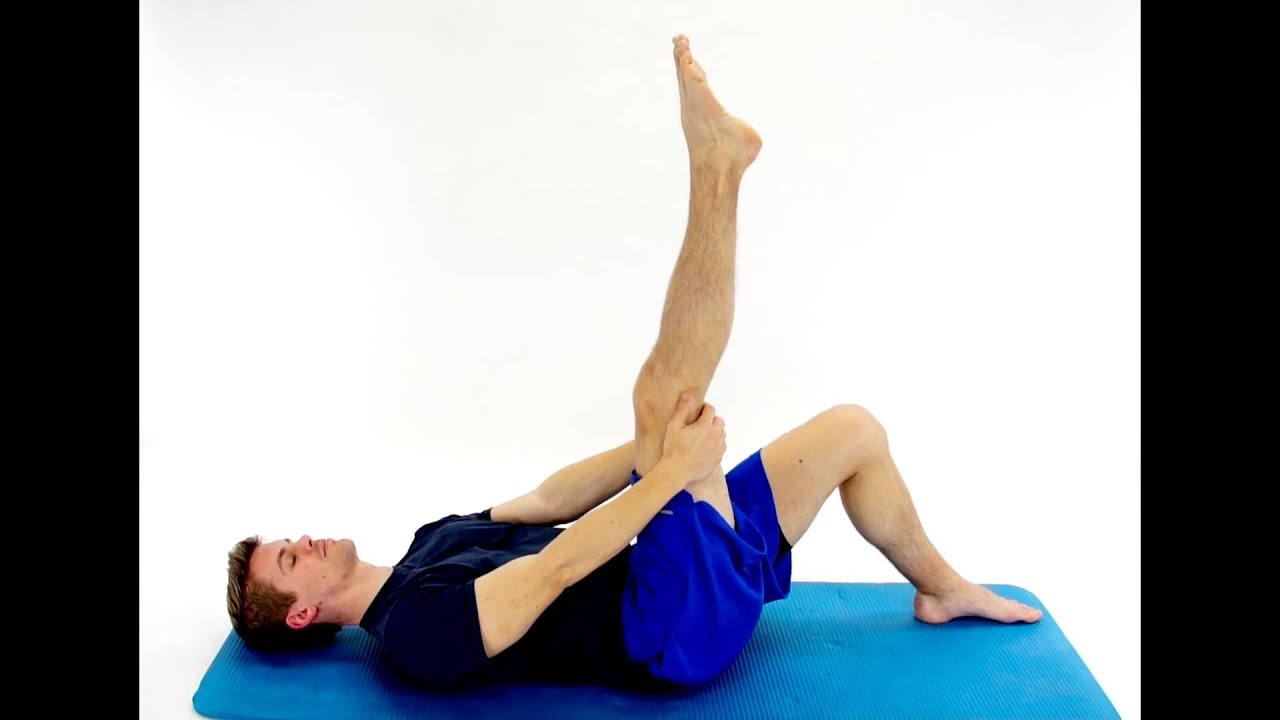 sciatic nerve glide - supine -hep2go - youtube, Muscles