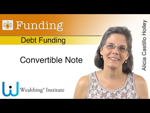 Debt/Equity Funding. Convertible Notes