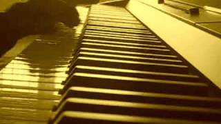 Right here waiting - Richard Marx Piano Cover .flv