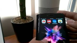 How to Stream Music from Youtube on Iphone and Macbook to Amazon Echo for Free
